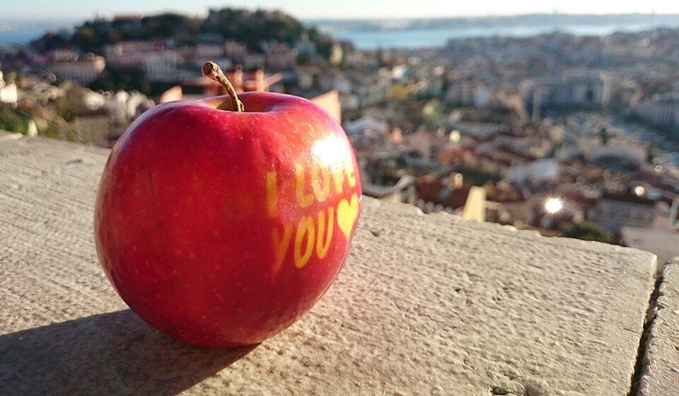 Что делать в Лиссабоне сразу после прилета?