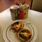 Лось в гостях у Pasteis de Belém