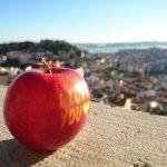 Смотровая площадка Senhora do Monte, Лиссабон