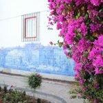 Всё цветет в Португалии